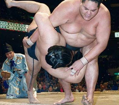 紺野美沙子,相撲