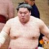 大相撲,溜席,正座,女性,溜席の妖精